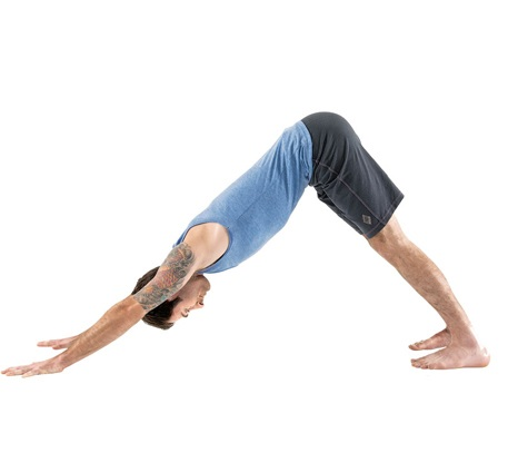 What Is The Sanskrit Name For Downward Facing Dog