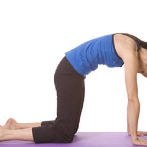 Marjaryasana – Cat Pose