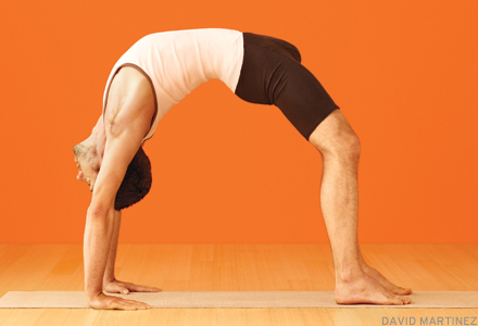 Urdhva Dhanurasana – Upward Bow or Wheel Pose