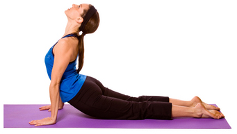 Urdhva Mukha Svanasana – Upward Facing Dog Pose
